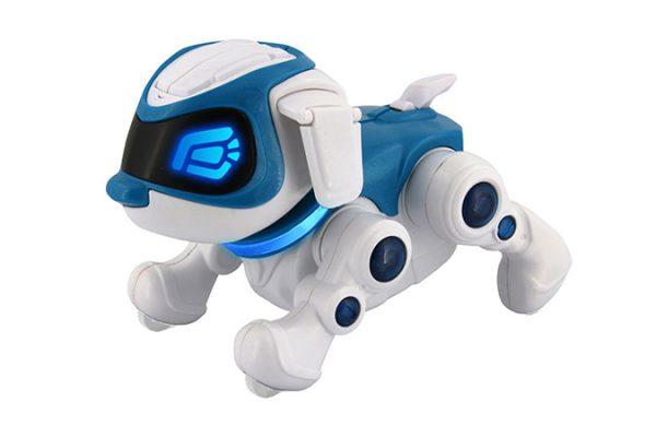 Puppy 360