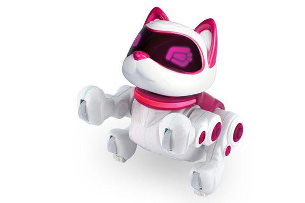Kitty 360