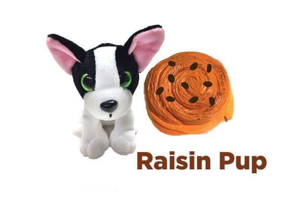 30837---SWEET-PUPS-RAISIN-PUP