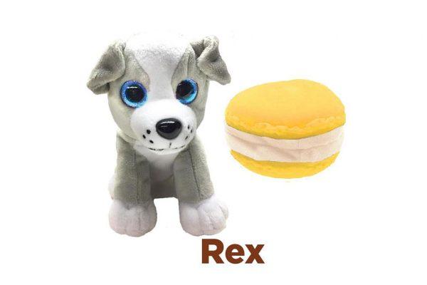 30837---SWEET-PUPS-REX